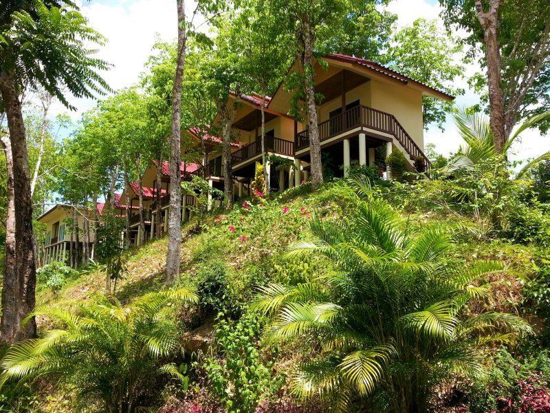 БИЗНЕС НА ПРОДАЖУ: Резорт на берегу реки в джунглях национального парка Кхао Сока!