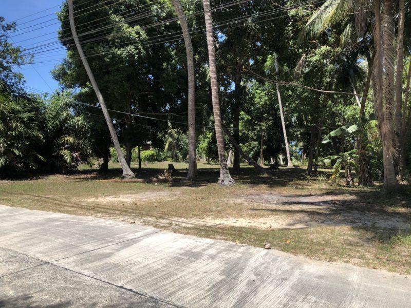 Участок возле дороги. Панган