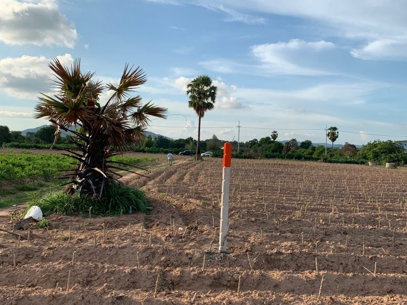 Земля в Районге, на пляже Пхала.