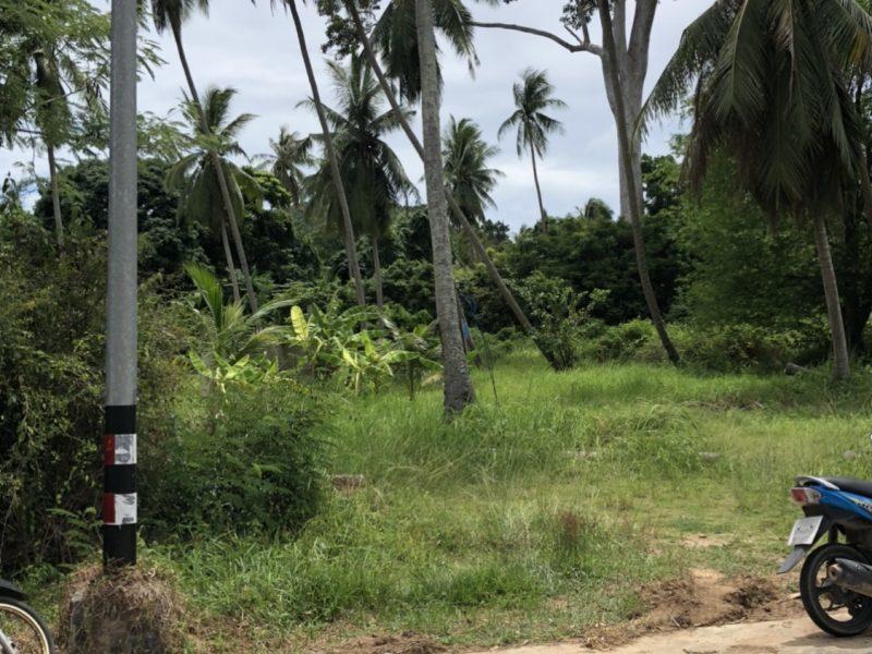 Земля 2 Рай (3 200 кв.м) Панган