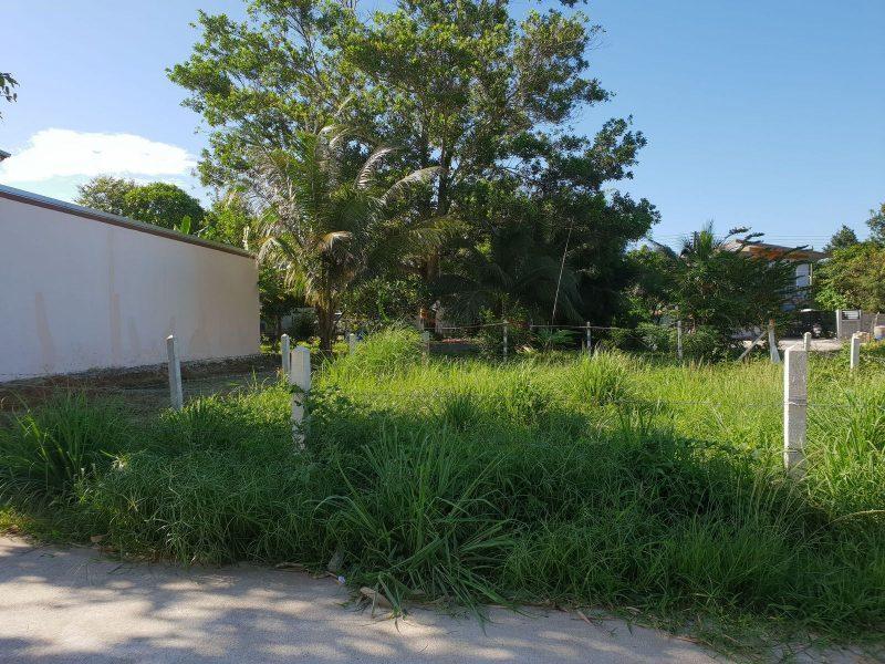 Продажа земельного участка в Бангта